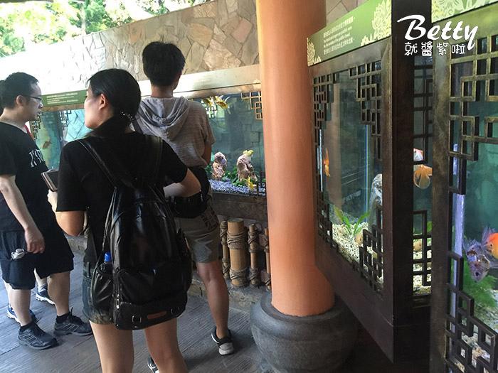 香港海洋公園 (28).jpg