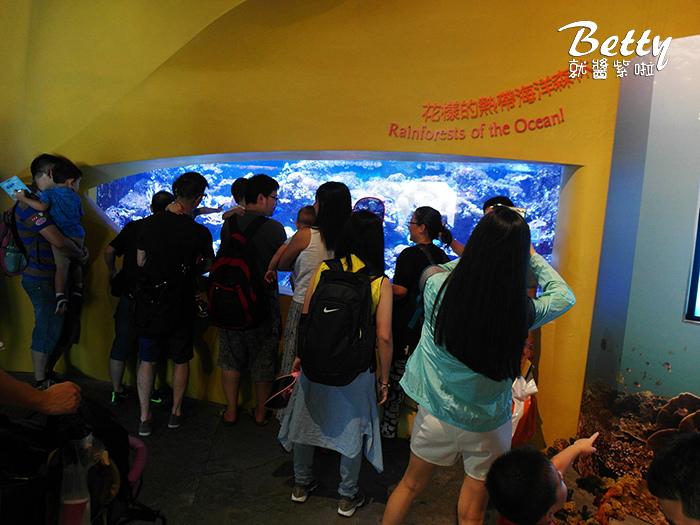 香港海洋公園 (66).jpg