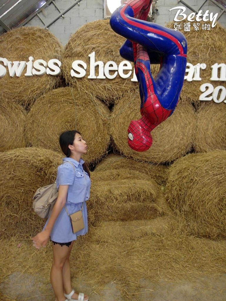 瑞士綿羊農莊 (22).jpg
