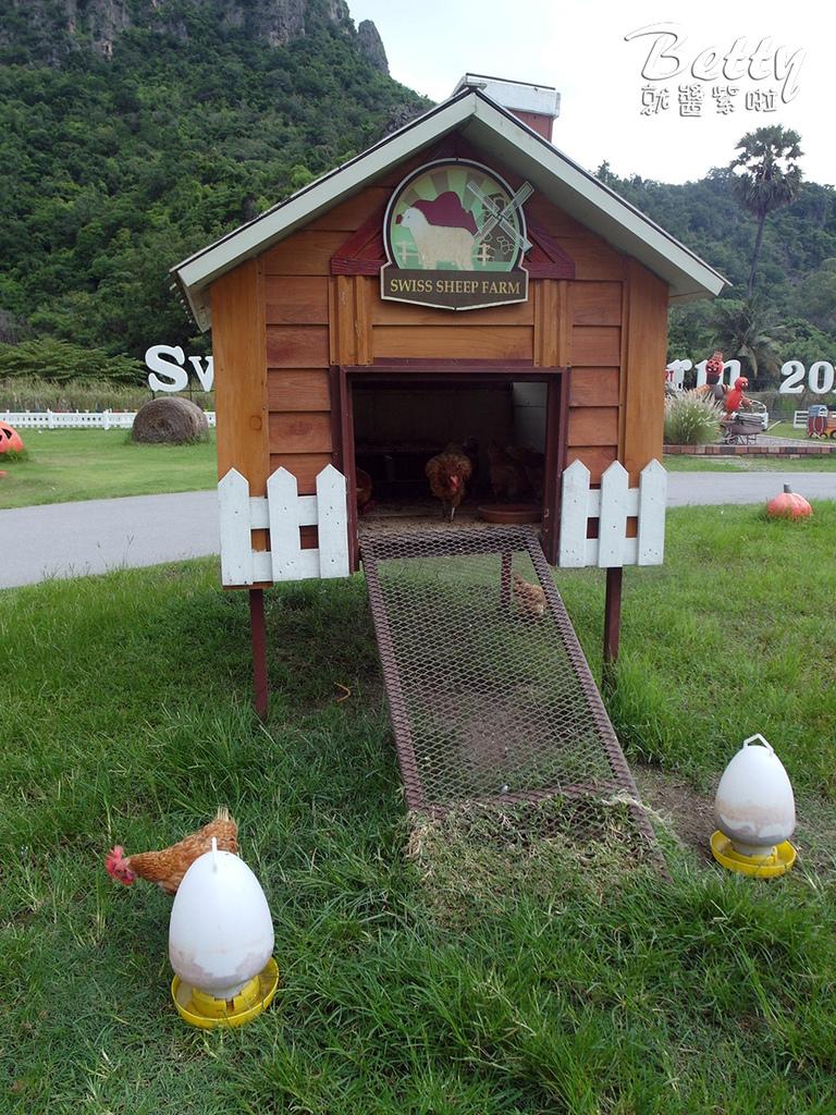 瑞士綿羊農莊 (34).jpg