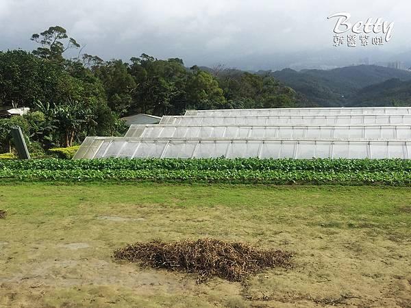 2017013清香休閒農場 (13).jpg