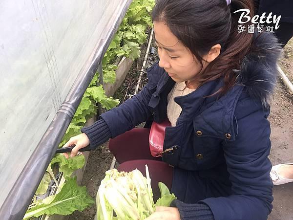 2017013清香休閒農場 (22).jpg