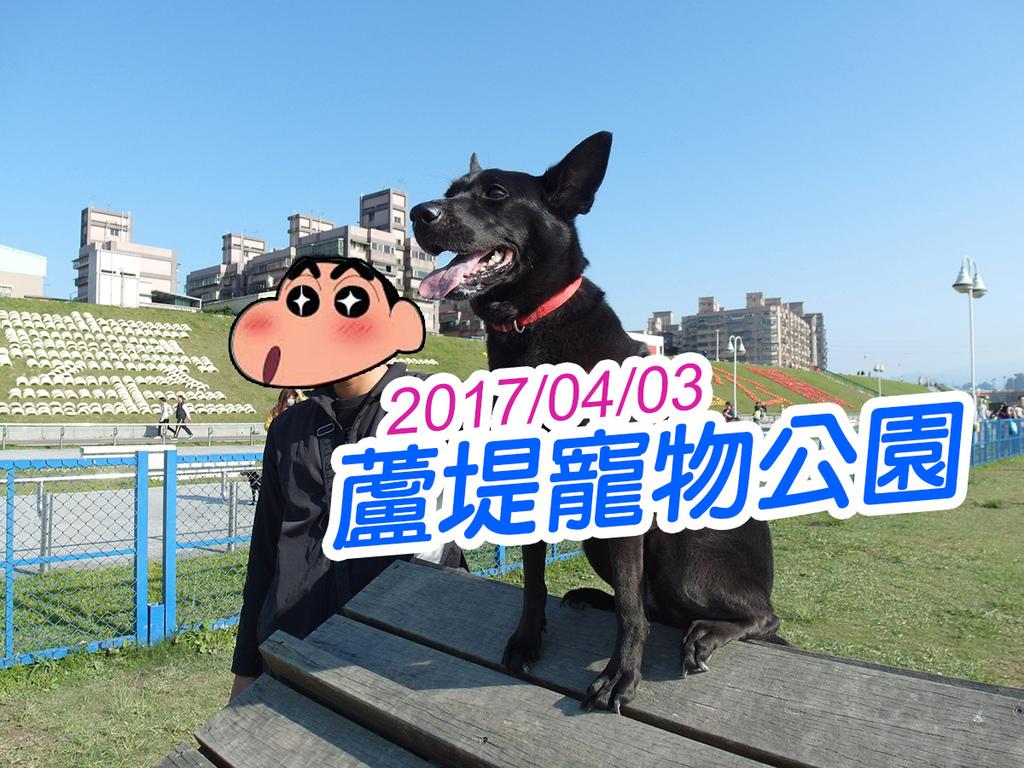20170403蘆堤寵物公園 (32).jpg