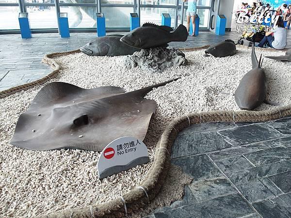 20170819國立海洋生物博物館 (1).jpg