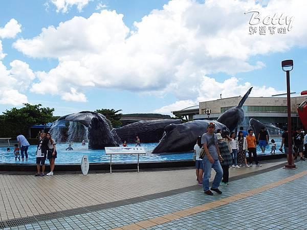 20170819國立海洋生物博物館 (12).jpg