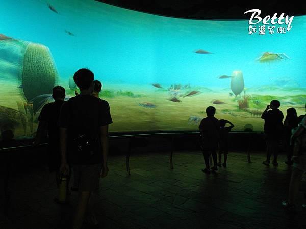 20170819國立海洋生物博物館 (38).jpg