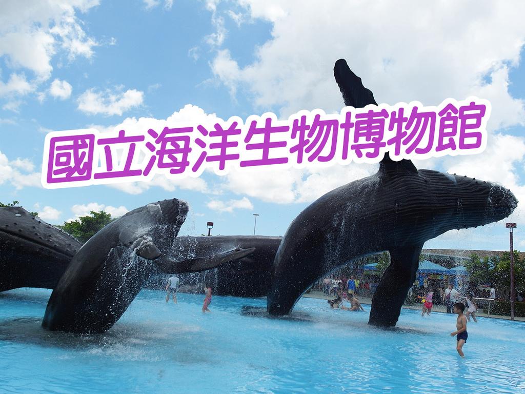 20170819國立海洋生物博物館 (46).jpg