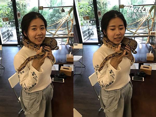 20180415胖鬣蜥原味廚房 (4).jpg