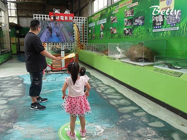 20180512頑皮動物園 (31).jpg