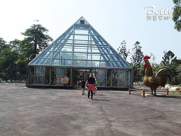 20180512頑皮動物園 (79).jpg