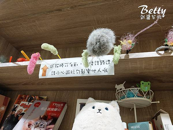 20180519板橋貓欸 (81).jpg