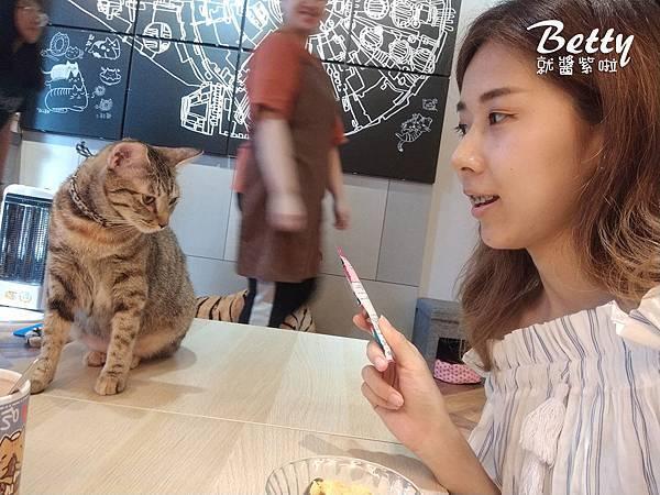 20190530吃貓黑店 (24).jpg