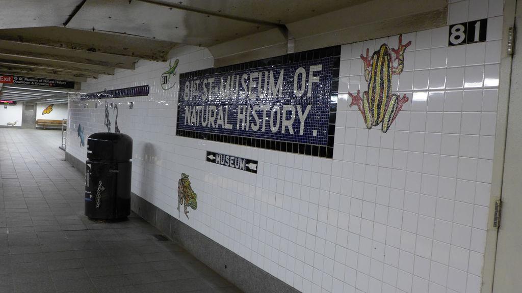 自然歷史博物館站