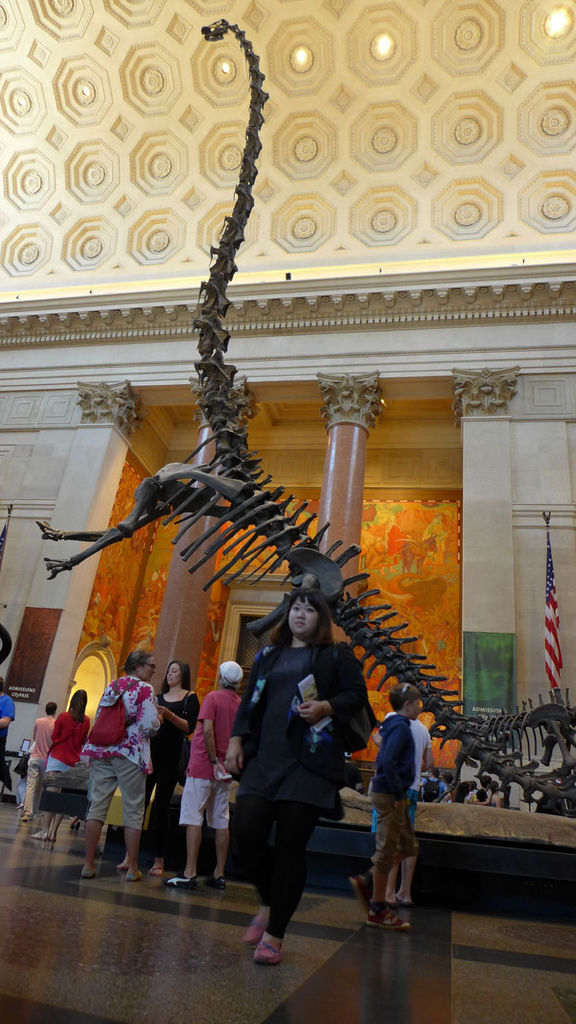 門口的重龍骨骼標本