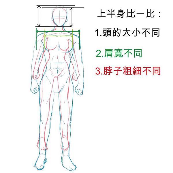 男女生身體畫法5.JPG