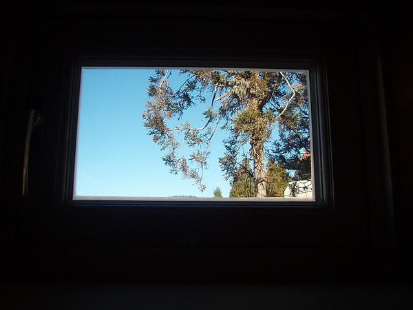 我的高度可以看到的風景.jpg