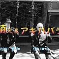 VTS_02_0[(000204)00-45-45].JPG
