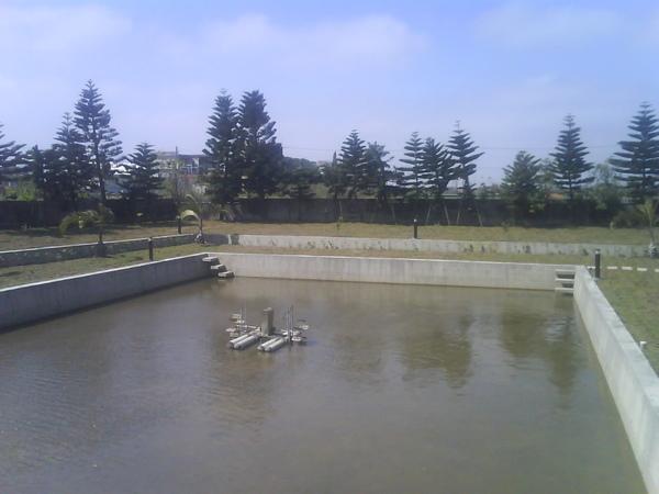 前方的魚池?游泳池?