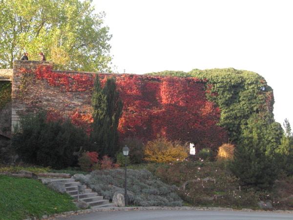 Schloss附近的城牆