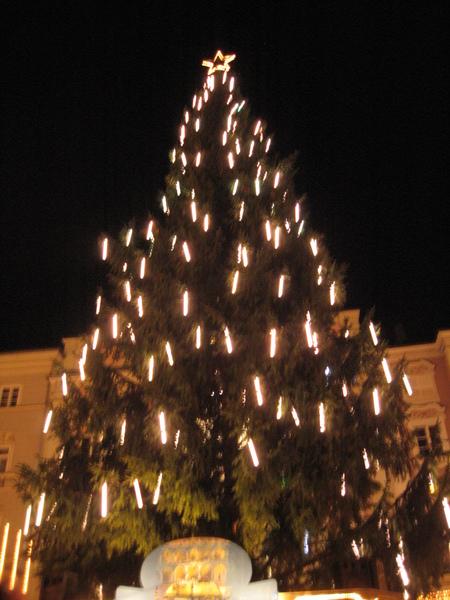 晚上的聖誕樹
