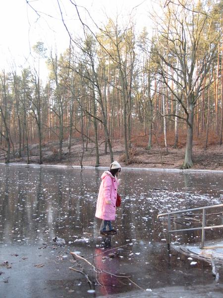 旅館附近的湖,結冰了