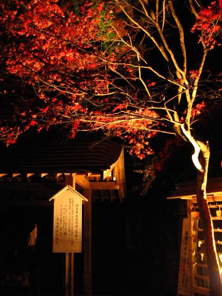 IMG_0162 神社旁的祈願所.JPG