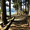 IMG_0558箱根神社附近的步道.JPG