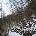 IMG_0404覆雪小路.JPG