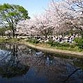IMG_0712北丸之內公園.JPG