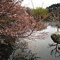 IMG_0362新宿御苑.JPG