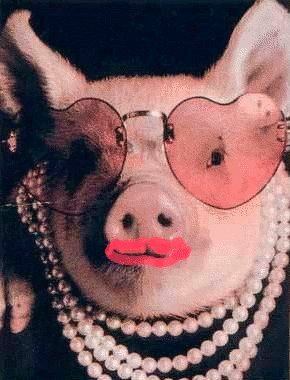 1211825923MSN-Messenger-Kissing-Pig-Virus-Still-on-the-Web-2.jpg