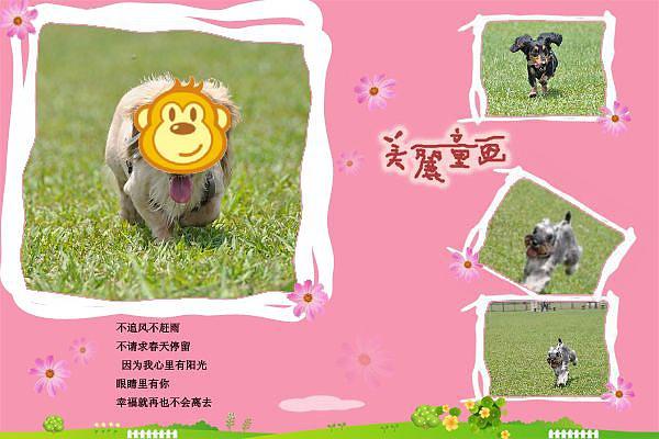 DSC_014003.jpg