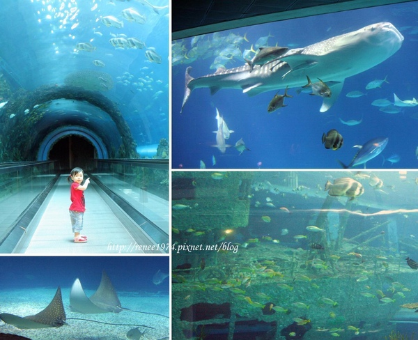 海底隧道blog.jpg