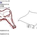 蜜汁雞腿(BY毛).jpg