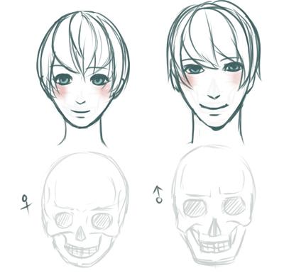 skull-4.jpg