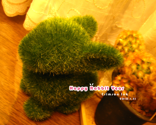 Grass Land草兔子