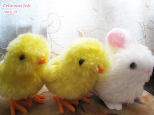 兔仔與雞群.jpg