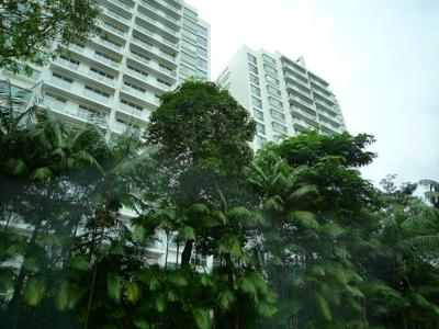 隨便拍新加坡街道.jpg