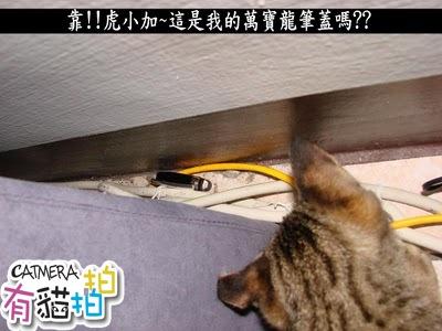 靠!!虎小加~這是我的萬寶龍筆蓋嗎?.JPG