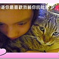 有貓拍拍 - 你醉寶貝.JPG