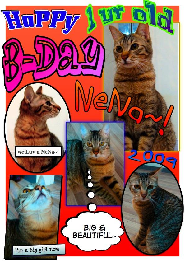 Happy Birthday NENA!!