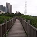 紅樹林步道