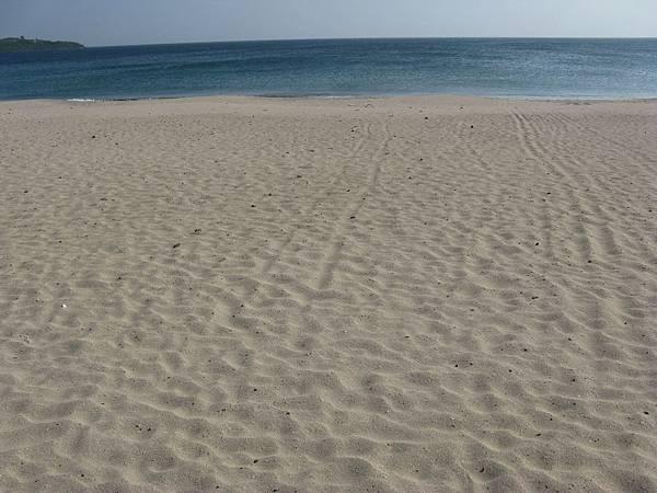 嵵裡沙灘 3