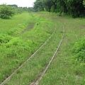 看起來有在行駛的鐵軌,草沒那麼高