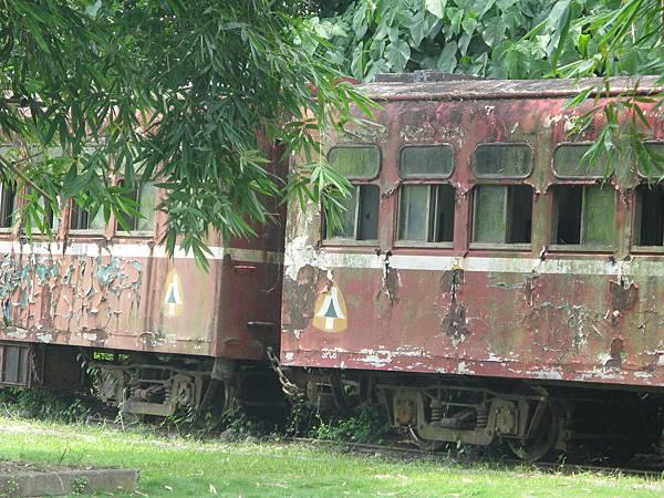 阿里山森林鐵路的中興號 DTC5 和光復號 SPC8 車廂