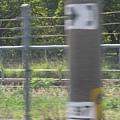 沒拍到…要拍高鐵柵欄旁的「注意火車」XD