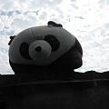 貓熊在屋頂