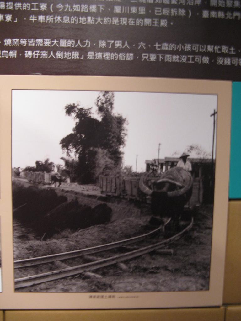 高雄市立歷史博物館「起厝‧磚瓦諸事會社」特展 -牛車