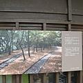 繞樹林而過的鐵軌