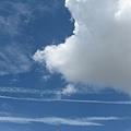 台南的天氣很好